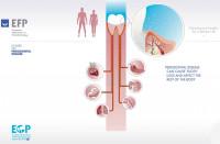 5. Fogágybetegség és belgyógyászati kórképek összefüggése (2)